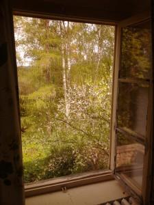 Pokoj 3 - Ubytování Fořtovna Cerhonice, Okolí Písku
