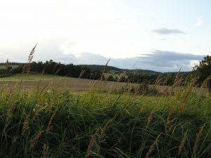 okolí-penzionu-Fořtovna-Písecko-jižní-Čechy-2